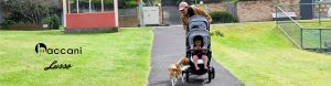Baccani Lusso double prams baby prams australia